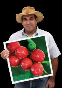vista coffee farmer